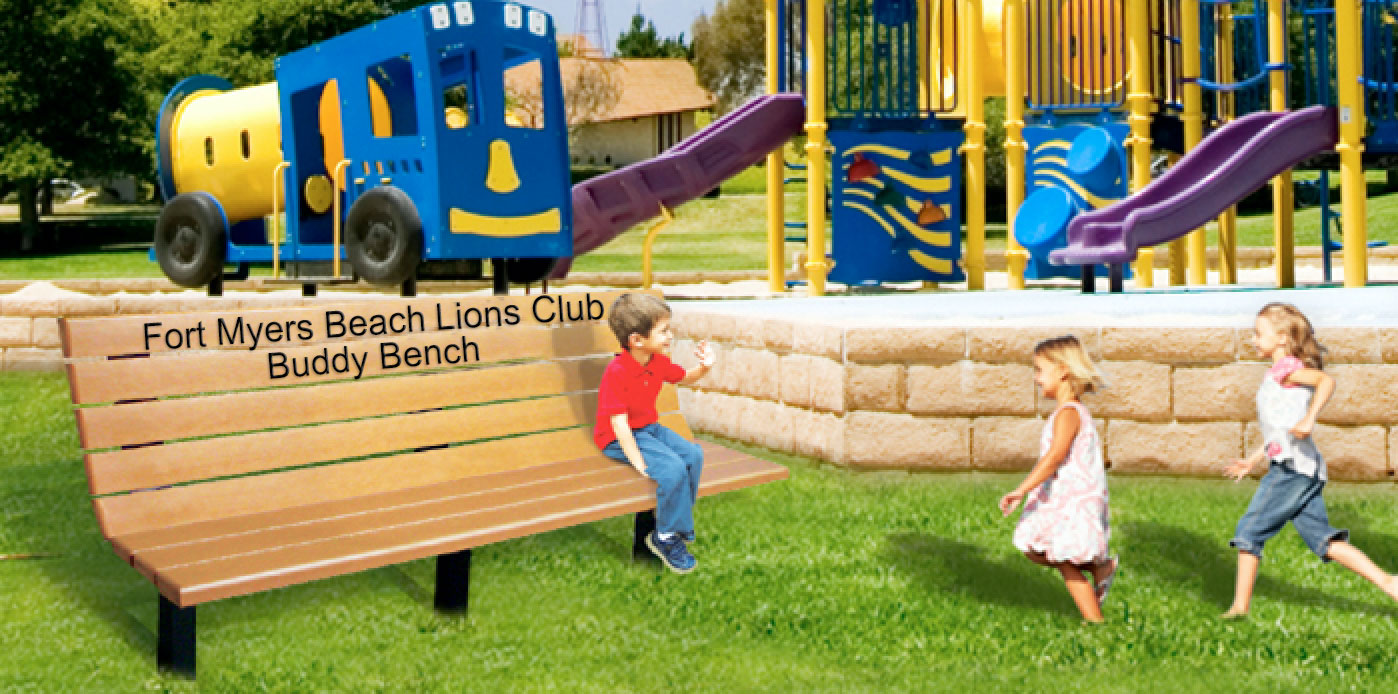 lions buddy bench